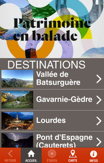 "interface application ""Chemin de vie de Bernadette"""