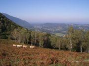 web-Bois-de-Lourdes-4