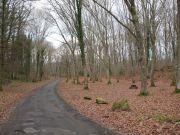web-Bois-de-Lourdes-5