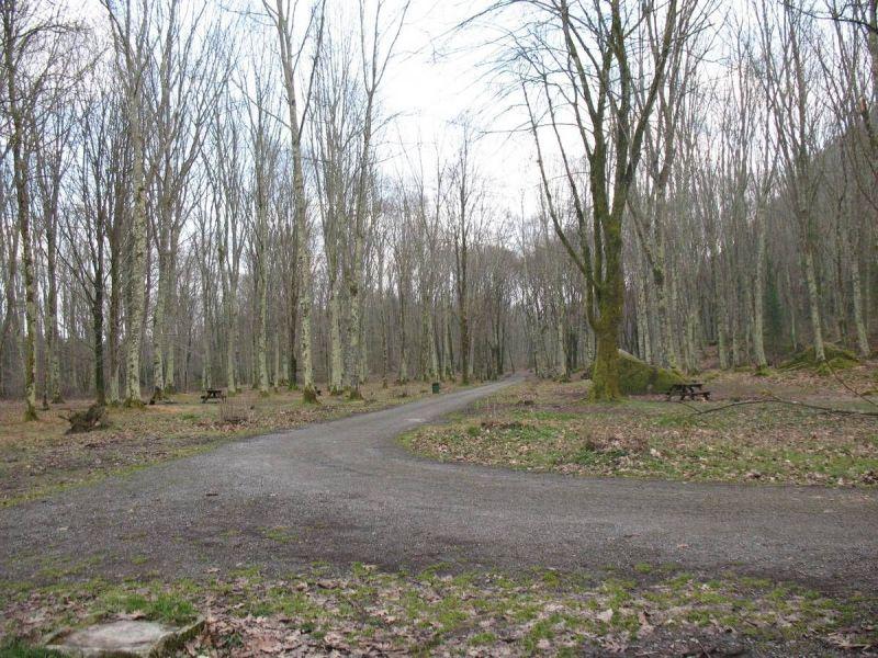 web-Bois-de-Lourdes-2